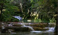 Paseos guiados para disfrutar de la diversidad de Navarra