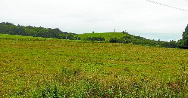 Beko Errota. Imagen del lugar exacto en el que la Plataforma en Defensa de Olaberria afirma que irían las pistas deportivas.