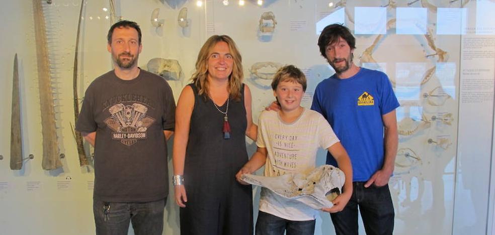 Un niño de Zumaia dona al Aquarium un cráneo de delfín hallado en el 'Flysh'
