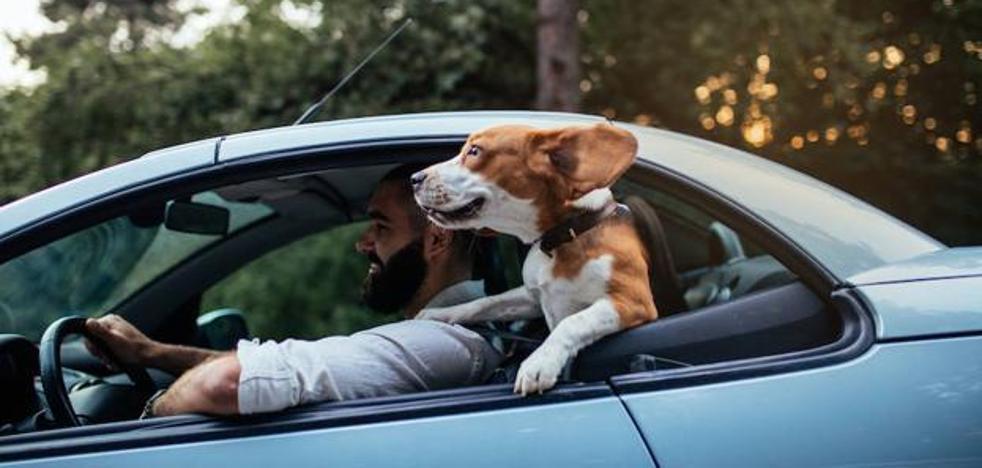No es un bulo: conducir con chanclas puede costarte 80 euros