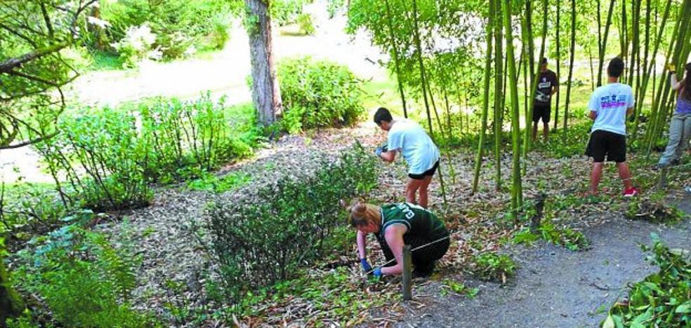 Bertiz, primer campo de trabajo en un parque natural