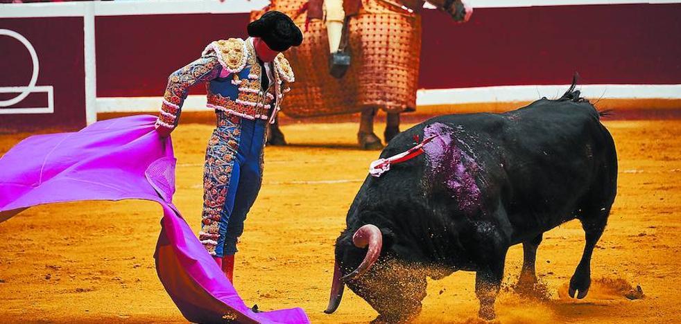 El toro que todo lo vio rojo en la plaza