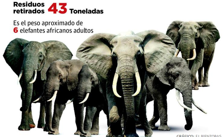 El peso equivalente a seis elefantes