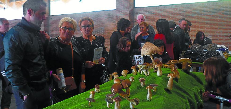 El grupo Beti Gazte prepara un nuevo 'Fin de semana micológico'