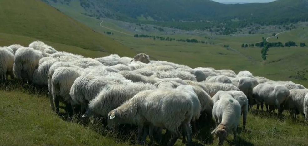 EAEko interes handieneko 55 naturguneak sei bideotan jaso dituzte
