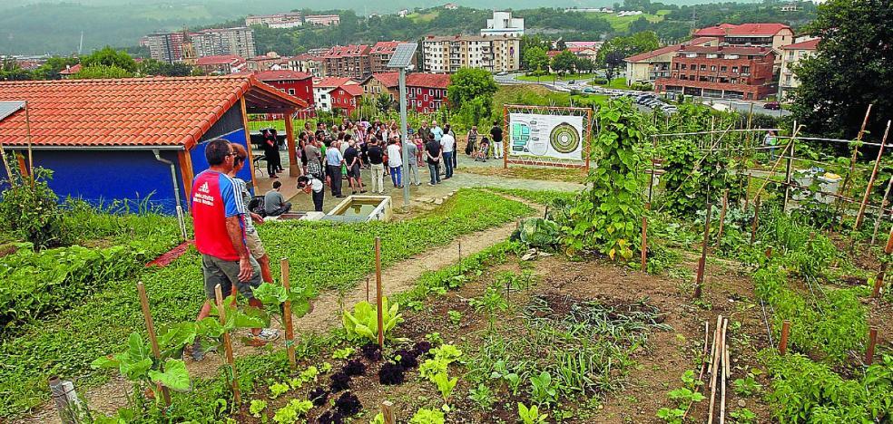Oarsoirria organiza hoy un taller sobre hierbas medicinales