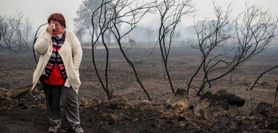 No hay relación entre el fuego en Galicia y la Ley de Montes