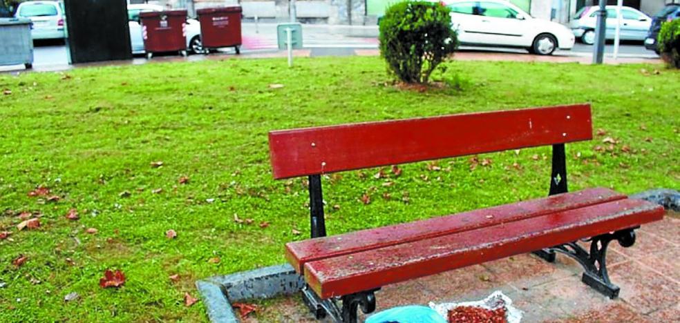 El Ayuntamiento pide que no se deje comida en la calle para los animales