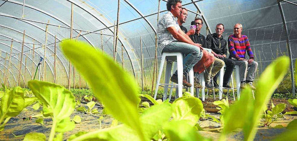 Nueva vida para las huertas de Santa Lucía