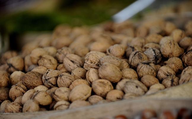 Comer nueces mejora la calidad del esperma