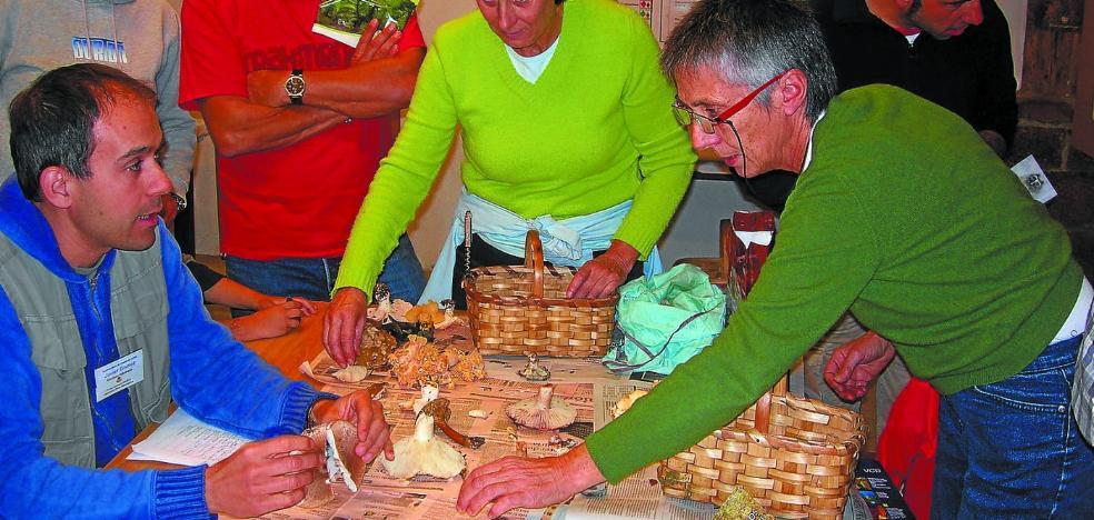 El Parque Micológico Ultzama celebra su Día del Hongo el domingo 19