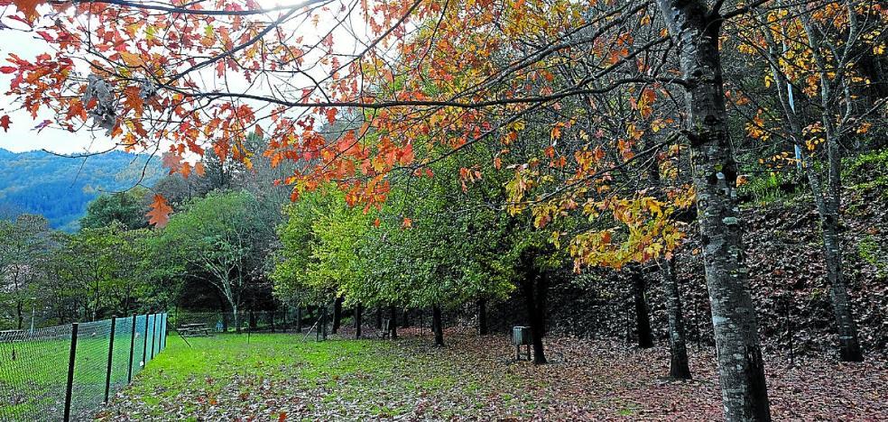Abierto en Itzio un 'kani leku' para uso y esparcimiento de los perros