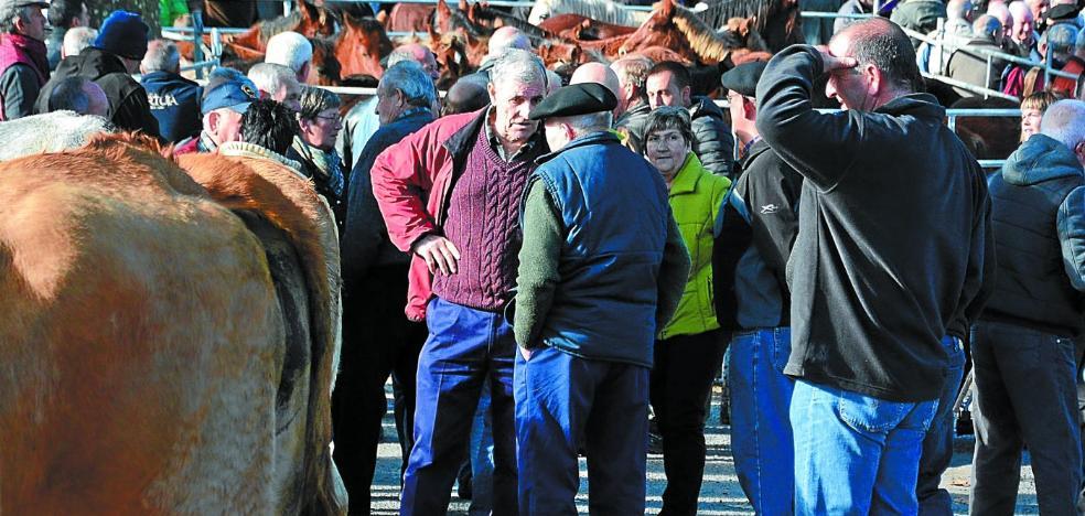 El buen tiempo anima la Feria en Doneztebe
