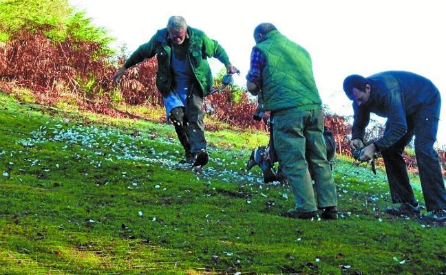 Fin de la temporada de caza en Etxalar con 91 docenas y 10 palomas capturadas en las redes