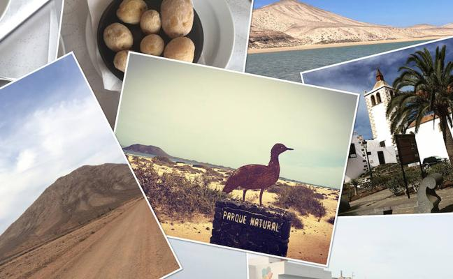 7 motivos para visitar fuerteventura