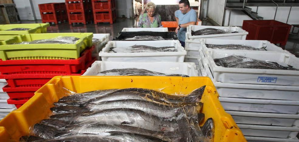 La merluza que se pesca en la costa cantábrica se reducirá un 12% el próximo año