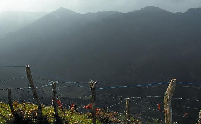 Excursión para conocer el origen de las montañas de Geoparkea