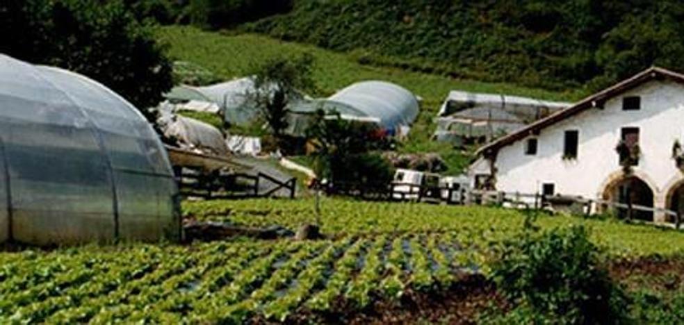 El número de explotaciones agrícolas baja en Gipuzkoa el 2,1% desde 2013