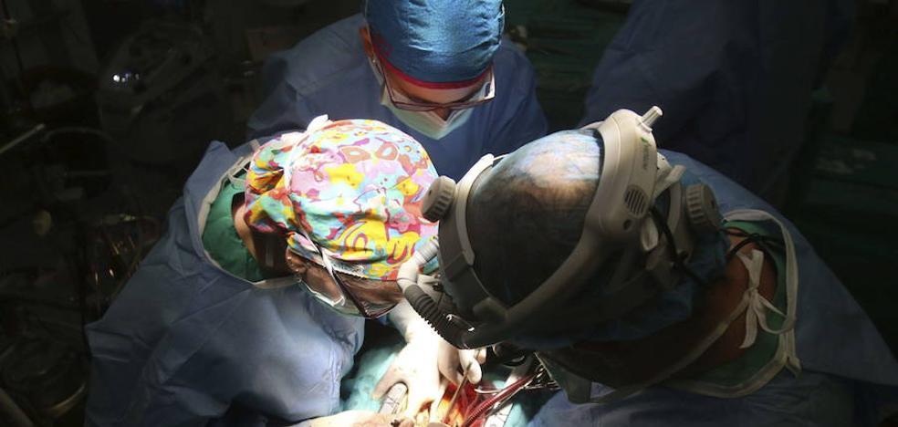 Euskadi sigue en cifras de récord y supera los 70 donantes de órganos por millón de población