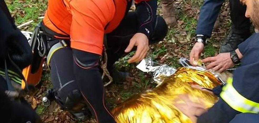 Los bomberos rescatan sana y salva a una oveja caída al río Oria en Lasarte
