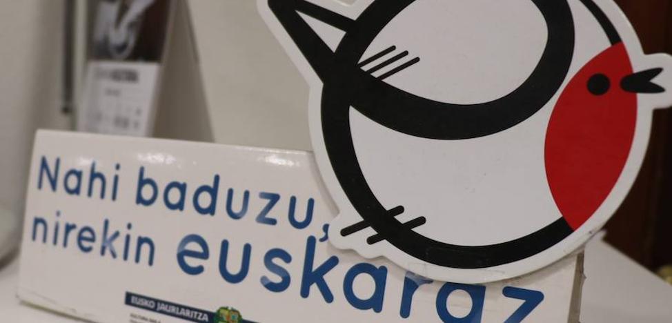 La Diputación critica la lectura «restrictiva» del TSJPV sobre su plan de euskera