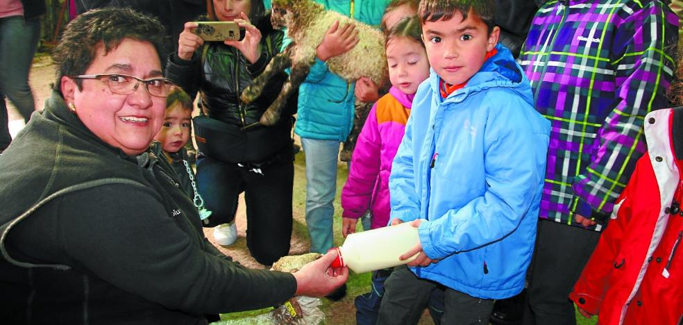 El Valle del Hierro batió su récord con 29.519 visitantes en 2017