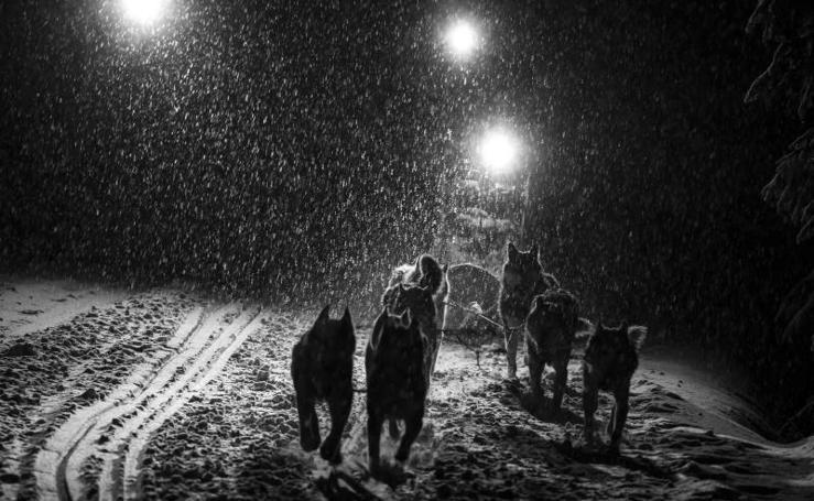 Odisea en la nieve