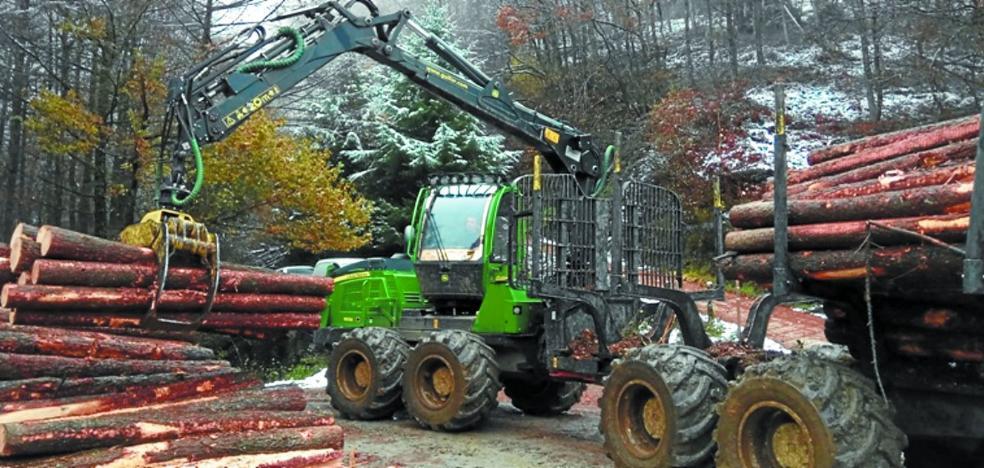 Una campaña informativa advierte sobre el comercio ilegal de madera