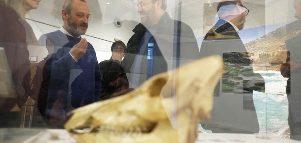 Un viaje de 8.300 años desde Hondarribia