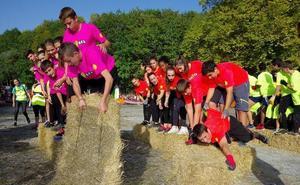 11.000 zuhaitzekin, Lesakakoa izango da orain arteko Oinez Basorik handiena
