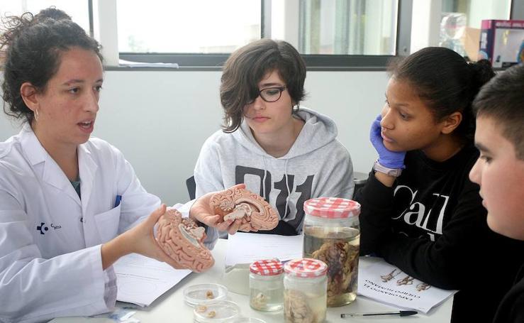 Biodonostia abre sus puertas a estudiantes de 4ª de ESO