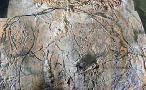 Baserriaz eta nekazaritzaz ariko dira Aranzadiren Arkeologia Jardunaldietan