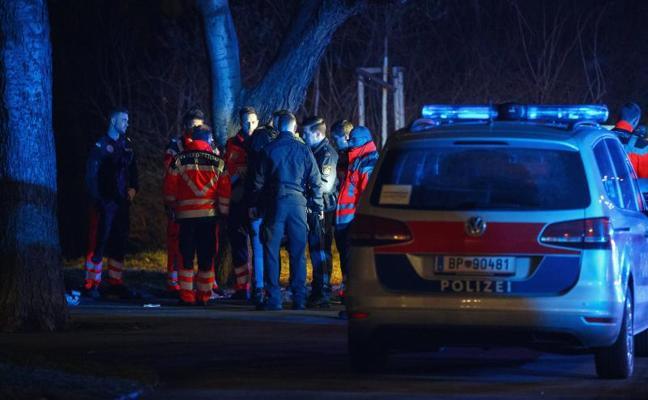 Cuatros heridos graves en dos ataques con cuchillo en el centro de Viena