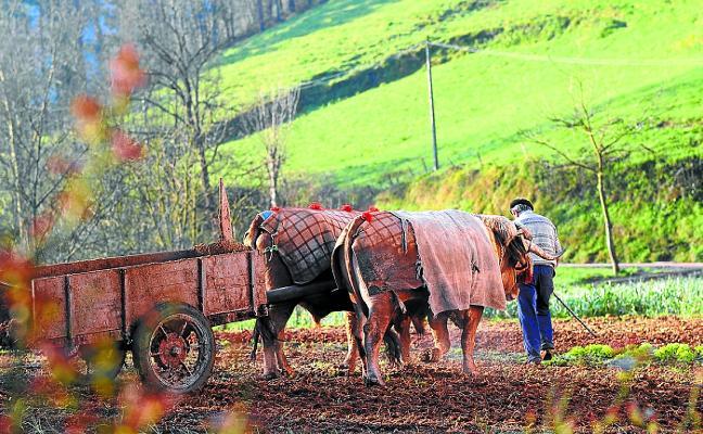 Las áreas rurales recibirán 100.000 euros