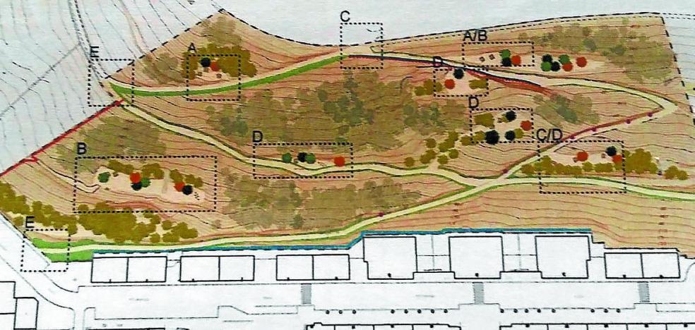 54.000 euros iniciales para convertir el zarzal de Artzamendi en un parque