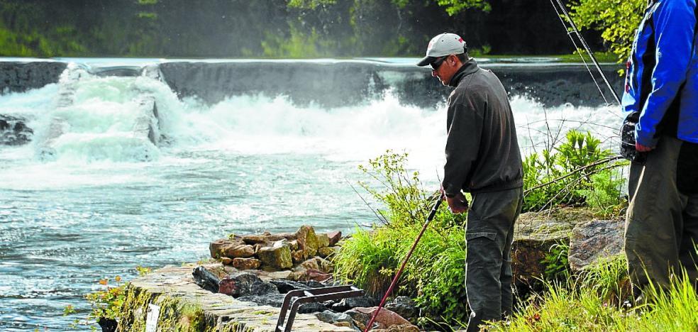 Este año será necesario un permiso especial diario para pescar salmón en el Bidasoa
