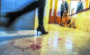 Detienen a un joven acusado de propinar una brutal paliza a su madre en Vitoria