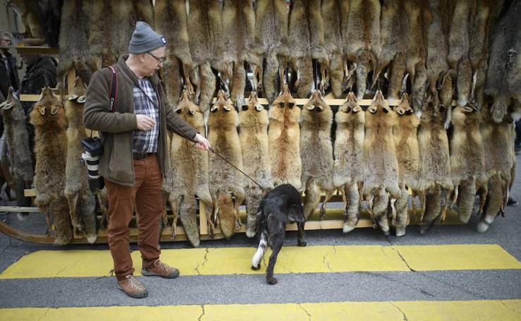 El mercado de pieles de Suiza