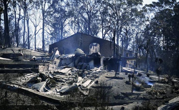 Devastadores incendios forestales en Australia