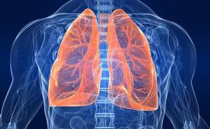 El cobre y el plomo de los suelos de Euskadi favorecen el cáncer de pulmón y esófago