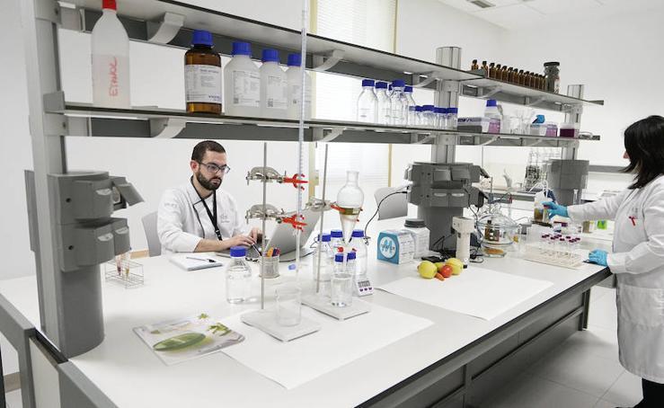 La cocina también es un laboratorio