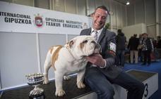 700 perros participan en la Exposición Canina Internacional de Gipuzkoa en Ficoba