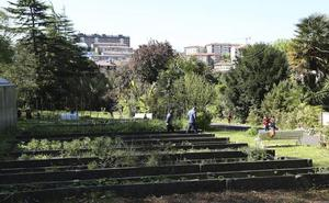 La oposición y los vecinos de Ulia critican la idea de ubicar la sede de Aranzadi en viveros