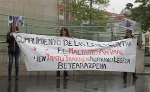 Mantienen la petición de cárcel para dos veterinarios de la Protectora de Animales de Donostia acusados de maltrato