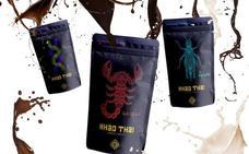 Insectos bañados con chocolate: el original snack con label vasco