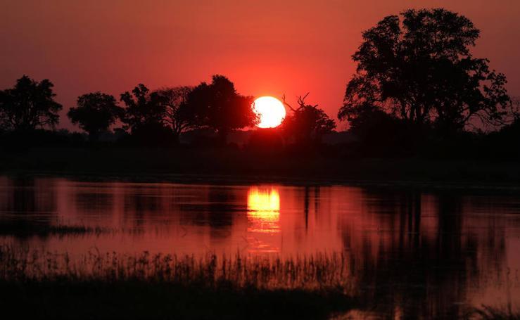 La belleza del delta del río Okavango