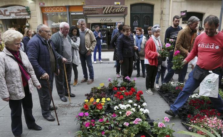 Feria de Plantas en Donostia