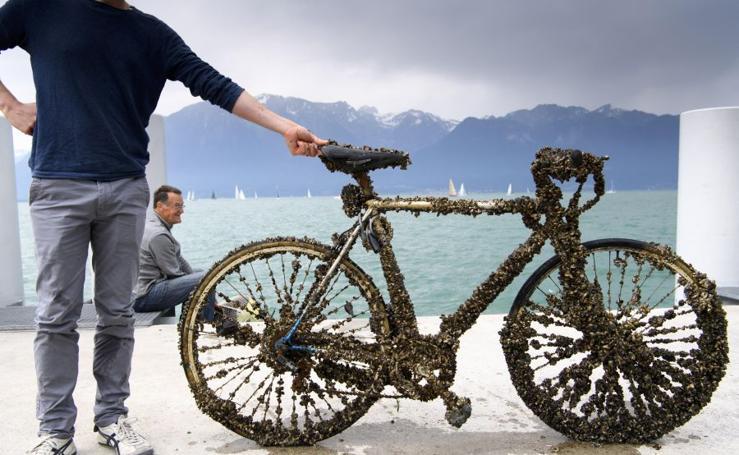 Bicicleta de mejillones, el nuevo descubrimiento suizo