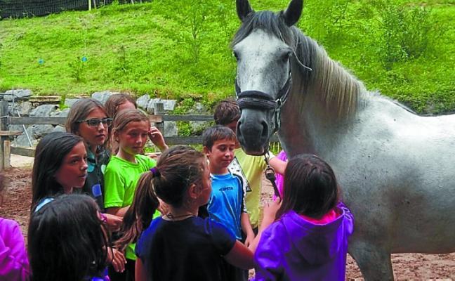 Aprender inglés montando a caballo en Agorregi