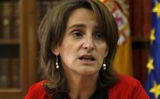 Teresa Ribera acepta ser ministra de Transición Energética y Medio Ambiente